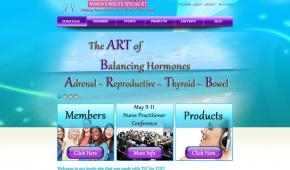 website design and seo sarasota fl