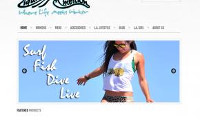 liquid ambition website design sarasota florida